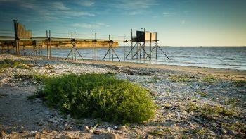 Permalien vers:Trail des plages